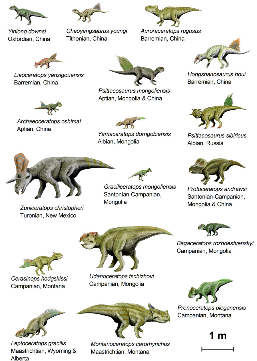 Dinosaure - Liste dinosaures ...