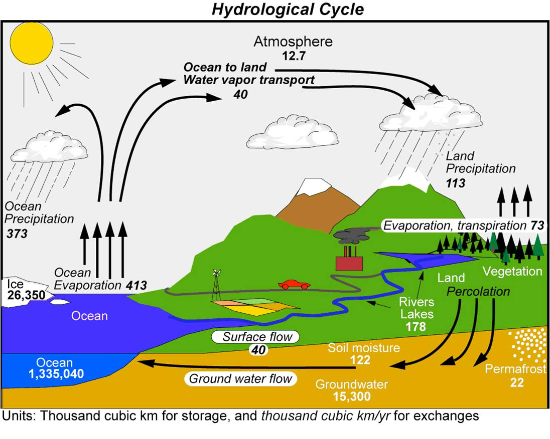 the four stages of a successful hydrologic cycle The water cycle enjoy learning about the water cycle for kids understand how the water cycle works with our facts that help explain the different processes in a way that's easy to follow.