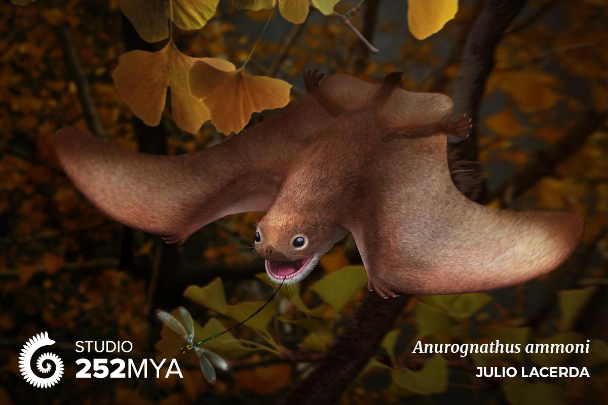 Documents Utiles Aux Gologues Palontologie Walrus Diagram Pinnipeds Pinterest Anatomy And Google Anurognathus Ammoni